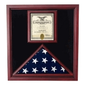 Award and flag display case display Case