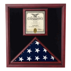 Award flag display case display: