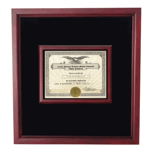 award shadowbox, 81/2 x 11 certificate with medal case