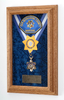 Single Medal Display Case- Wood Awards Display Case
