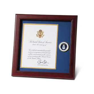 U.S. Air Force Medallion 8-Inch by 10-Inch Presidential Memorial Certificate Frame