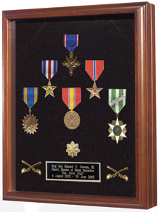 Medal Case - Wood / shadow box